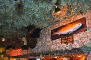 Choáng ngợp với quán rượu được trang trí bằng 2 triệu USD tiền mặt