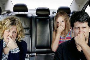 Làm thế nào để khử mùi da trên ô tô mới mua?