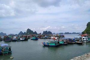 Quảng Ninh: Cấm biển để ứng phó với cơn bão KOGUMA