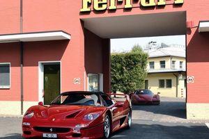 Ferrari bổ nhiệm nhân vật đặc biệt làm giám đốc điều hành mới