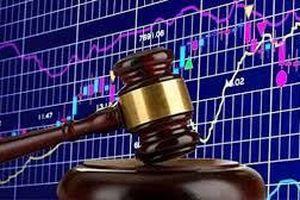 Thành viên Hội đồng quản trị Công ty cổ phần Tập đoàn Hà Đô bị xử phạt