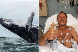 Hy hữu thợ lặn thoát chết dù đã nằm trong miệng cá voi giữa biển khơi