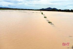 Hà Tĩnh: Mưa lớn gây ngập úng hơn 12.630 ha diện tích hoa màu và lúa hè thu