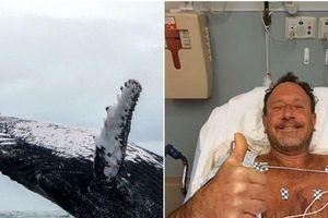 Ngư dân bị cá voi nuốt chửng sống sót thần kỳ