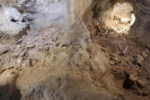 Phát hiện hài cốt của 9 người Neanderthal trong hang