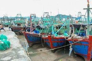 Nghệ An cấm tàu thuyền ra khơi trong bão số 2