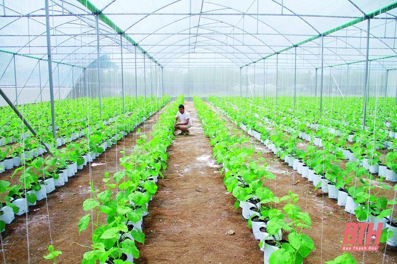 Phát triển nông nghiệp và xây dựng nông thôn mới bền vững: Huy động nguồn lực cho phát triển nông nghiệp, nông thôn