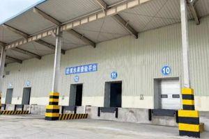 Khu giám sát quản lý hoa quả nhập khẩu cảng Khâm Châu đã thông qua thẩm định của Tổng Cục Hải quan Trung Quốc