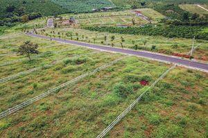 Thêm cán bộ ở Bảo Lộc bị đình chỉ vì liên quan dự án 'ma'