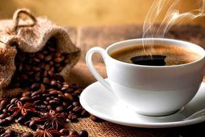Giá cà phê hôm nay 14/6: Chuyên gia dự đoán giá cà phê tuần này, xu hướng tăng đang thắng thế