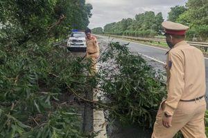 Cảnh sát giao thông xử lý cây đổ, thông đường cao tốc Pháp Vân – Cầu Giẽ - Ninh Bình