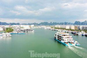 Hàng chục nghìn tỷ 'trôi' trên vịnh Hạ Long