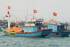 Bổ sung 462,095 tỷ đồng từ ngân sách trung ương cho thực hiện chính sách phát triển thủy sản