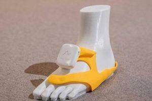 Phát triển thiết bị định vị dẫn đường trên giày cho người khiếm thị