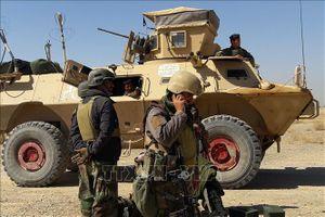 Afghanistan bắt giữ chỉ huy chủ chốt của Taliban