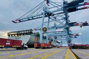 Cảng Quốc tế Cái Mép tiếp nhận thành công chuyến tàu đầu tiên trên tuyến dịch vụ mới