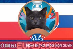Mèo tiên tri dự đoán Ba Lan vs Slovakia - EURO 2021: Mèo Cass chọn đội mạnh