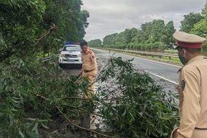 CSGT xử lý nhiều điểm cây đổ trên cao tốc Pháp Vân - Ninh Bình