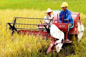 Hội Nông dân Việt Nam: Khơi dậy tinh thần thi đua thời kỳ mới