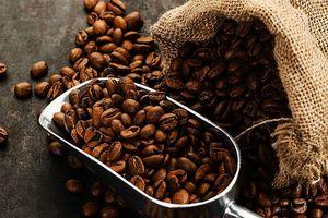 Giá cà phê hôm nay 15/6: Đầu cơ chốt sổ mạnh, Robusta xuống dưới mốc 1.600 USD/tấn