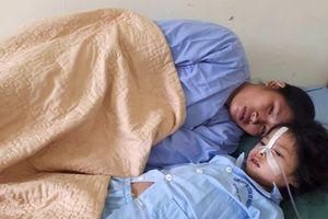 Một gia đình ở Hà Giang phải nhập viện do ăn phải nấm độc