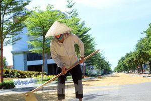 Nông dân phơi thóc trên con đường tiền tỉ ở khu 'nhà giàu' Hà Đông