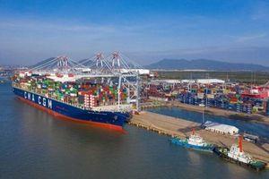 Vũng Tàu: Cảng Quốc tế Cái Mép khai thác tuyến tàu thứ 4 trực tiếp đi Mỹ
