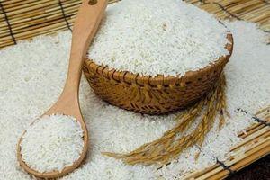 Quy định mới của EU áp dụng hạn ngạch mới đối với gạo Việt Nam