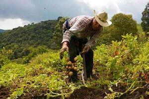 Venezuela tố Mỹ 'tước' quyền tiếp cận lương thực