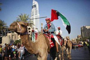 Bộ Không gì là không thể của UAE đặc biệt thế nào?