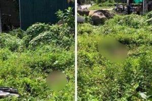 Nam thanh niên 18 tuổi tử vong bất thường nằm giữa bụi cỏ