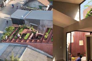 Độc đáo với nhà ống gác lửng dùng vườn rau làm mái cách nhiệt