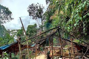 'Vàng tặc' đục khoét lõi rừng phòng hộ tại Thừa Thiên – Huế