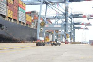 Hàng container thông qua cụm Cái Mép-Thị Vải đạt 2,3 triệu TEU