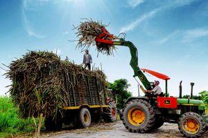 Bộ Công Thương công bố mức thuế chính thức đối với đường mía nhập khẩu từ Thái Lan