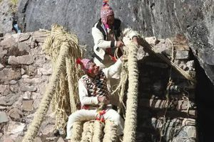 Dựng lại 'cây cầu sống của người Inca'