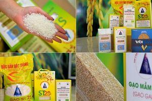 Gạo Việt xuất khẩu: Thay đổi để có vị thế vững chắc