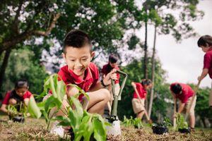 Bảo vệ môi trường là tiêu chí để phát triển bền vững
