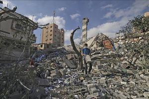 Liên đoàn Arab kêu gọi EU đóng vai trò trong việc khôi phục tiến trình hòa bình Israel-Palestine