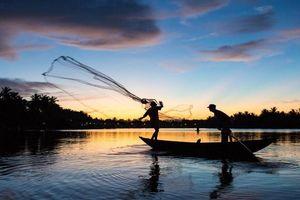 Những đột phá chiến lược của kinh tế Cà Mau
