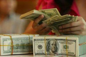 Tỷ giá ngoại tệ hôm nay 18/6: Đồng USD tiếp tục tăng giá