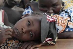 Hơn 80 học sinh và 5 giáo viên bị bắt cóc ở trường học tại Nigeria