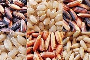 Những lợi ích của gạo lứt đối với sức khỏe mọi người