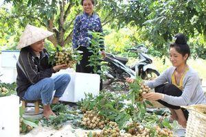 Sơn La: Dấu ấn trong xây dựng nông thôn mới