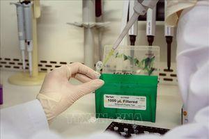 Bình Dương: Ghi nhận 19 trường hợp dương tính với SARS-CoV-2 trong một ngày