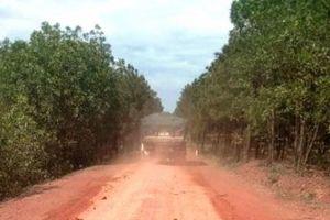 Quảng Bình: Xe chở đất 'hoành hành' Tỉnh lộ Sen – Bang