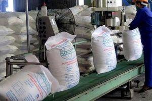 Áp thuế đường Thái nhập khẩu, giá đường trong nước đã nhích lên