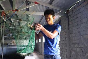 Quảng Bình: Chàng kỹ sư trẻ 'hứa hẹn' thu tiền tỷ từ nuôi cá chình