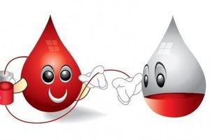 Nhóm máu - Điều cần biết về nguyên tắc cho và nhận