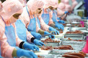 Mỹ đứng đầu về xuất khẩu thủy sản của Việt Nam, đạt 666,81 triệu USD